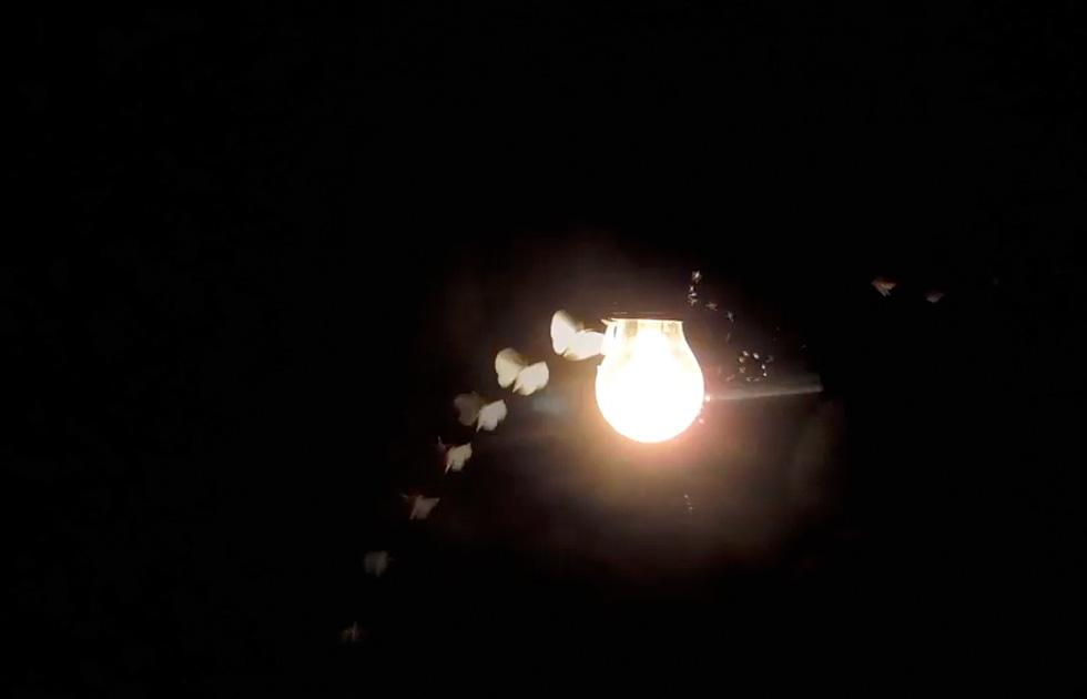 07 Licht Ins Dunkel - Jasper Diekamp