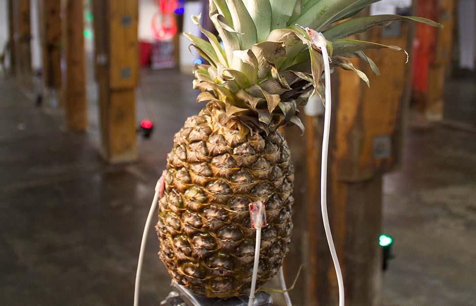 03 Pineapple Dreams - Jasper Diekamp X